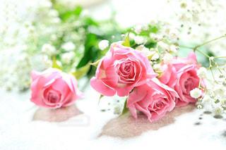 かすみ草,ピンク,花束,薔薇,ピンクのバラ,ピンクの薔薇