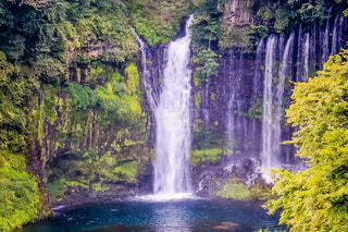 白糸の滝の写真・画像素材[1448916]