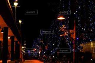 街灯とイルミネーションの写真・画像素材[1682359]
