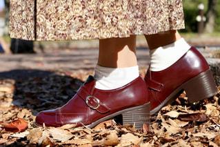 赤白と青の靴の写真・画像素材[1799444]