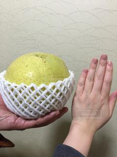 フルーツ,梨,大きい