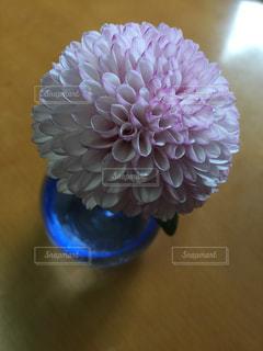 近くに紫の花と花瓶のアップの写真・画像素材[899100]