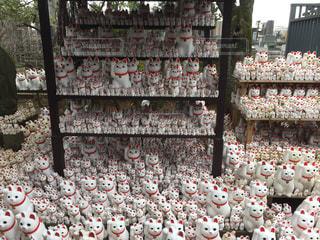 建物の前に立っている猫のグループの写真・画像素材[900312]