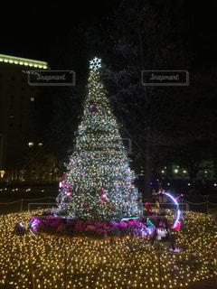 夜ライトアップされたクリスマス ツリー - No.939311