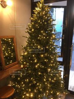 カフェ,冬,オシャレ,クリスマス,ツリー,店内,落ち着く