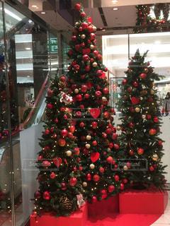 冬,クリスマス,ツリー,店内,お飾り