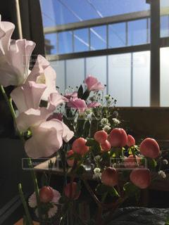 青空,花瓶,フラワー,窓,お花,休日