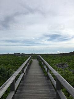 長い木の橋の写真・画像素材[1223073]