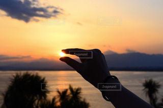 自然,風景,海,空,夕日,木,屋外,太陽,雲,夕焼け,夕暮れ,手,水面,夕方,光,暖かい,江ノ島,江の島