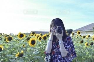 ひまわり畑で撮影会!の写真・画像素材[3381182]