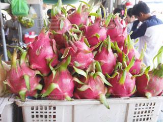 ピンク,フルーツ,東南アジア,ドラゴンフルーツ