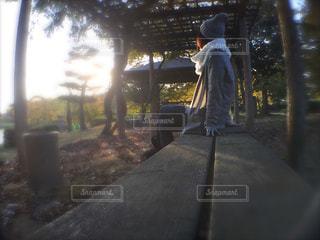 公園のベンチでの写真・画像素材[862852]