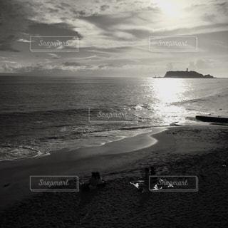 湘南の海の写真・画像素材[837514]