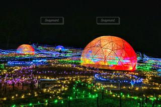 昭和記念公園のXmasの写真・画像素材[938190]
