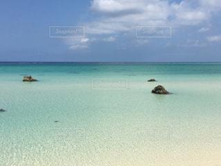 自然,水面,泳ぐ,宮古島,日中