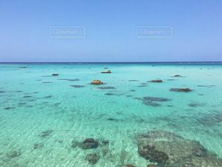 自然,海,水面,海岸,泳ぐ,宮古島,日中