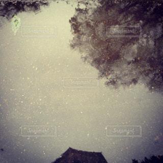 雨の写真・画像素材[839603]