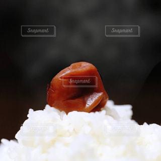 皿の上の赤と白ご飯の写真・画像素材[1217772]