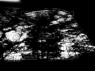 夜のジェットコースターの写真・画像素材[843888]