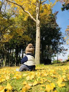 木に座る人の写真・画像素材[842973]