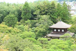 上から銀閣寺の写真・画像素材[928192]