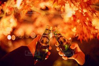 紅へ祝福の写真・画像素材[899174]