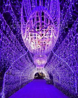 紫光 - No.919827