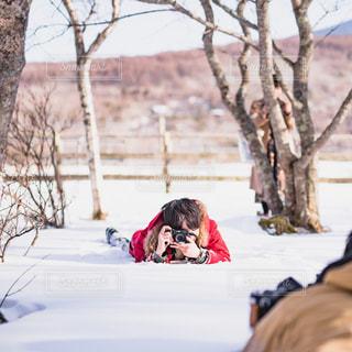 雪の中に。の写真・画像素材[1026876]