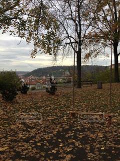 プラハの公園のブランコの写真・画像素材[844109]