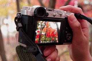 カメラを持っている手の写真・画像素材[850029]