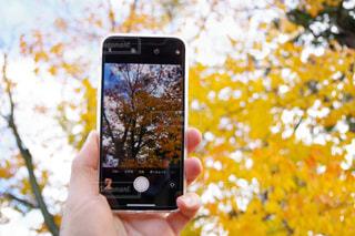 携帯電話を持つ手の写真・画像素材[850031]