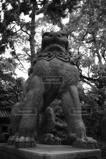 木に座る人の像の写真・画像素材[848073]