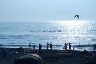 海の写真・画像素材[2379727]