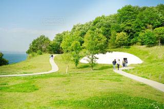 緑豊かな緑のフィールドに立っている人の写真・画像素材[1177751]
