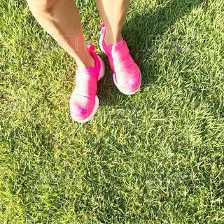 lovely pink♡の写真・画像素材[846673]