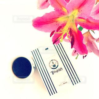 近くの花のアップの写真・画像素材[854517]