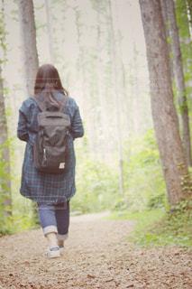 落ち葉道を歩く少女 - No.878231