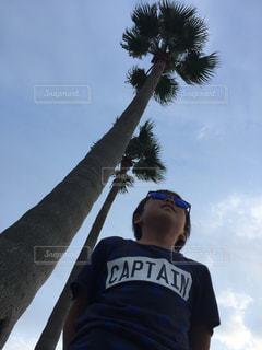ヤシの木の横に立っている人の写真・画像素材[890019]