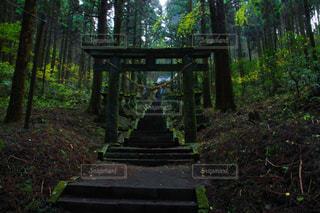 色見熊野座神社 - No.883054