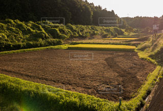 のどかな田園風景 - No.879268