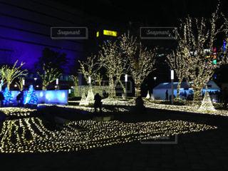 ライトアップ 博多駅 夜景