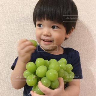 子ども,食べ物,フルーツ,果物,マスカット,シャインマスカット,ぶどう