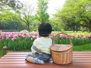 子ども,公園,花,キッズ,木,屋外,散歩,休憩,幼児,男の子,お散歩,おでかけ