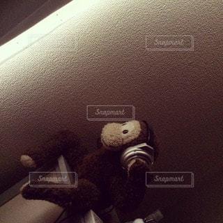 猿の写真・画像素材[33743]