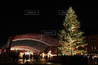 夜ライトアップされたクリスマス ツリーの写真・画像素材[915118]
