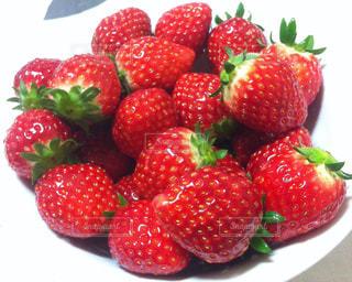 赤,いちご,フルーツ,果物,ストロベリー