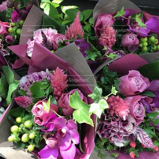 近くに紫の花の房のアップの写真・画像素材[888880]