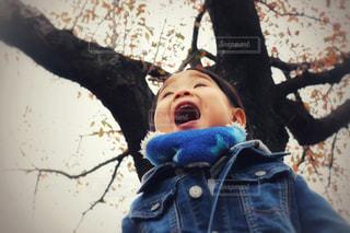秋を探しにの写真・画像素材[886018]