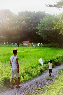 田園を走る子の写真・画像素材[1329638]