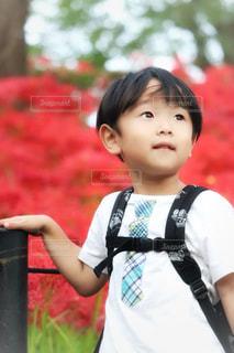 近くに少年のの写真・画像素材[1486224]
